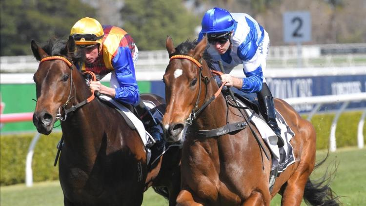 24/08/19 – Saturday Horse Racing Tips for Randwick