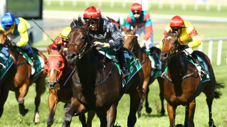 17/08/19 – Saturday Horse Racing Tips for Eagle Farm