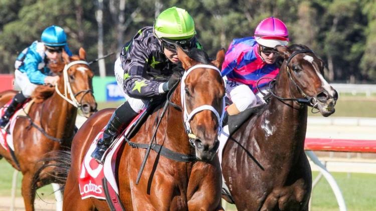 21/08/19 – Wednesday Horse Racing Tips for Sandown