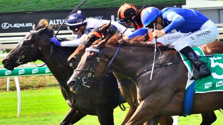21/09/19 – Saturday Horse Racing Tips for Eagle Farm