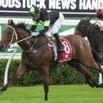 kylease racehorse