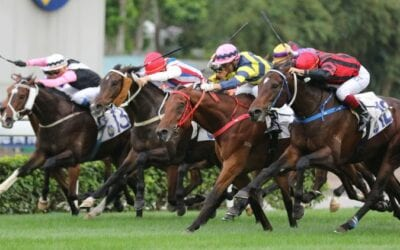21/6/20 – Sunday Horse Racing Tips for Sha Tin