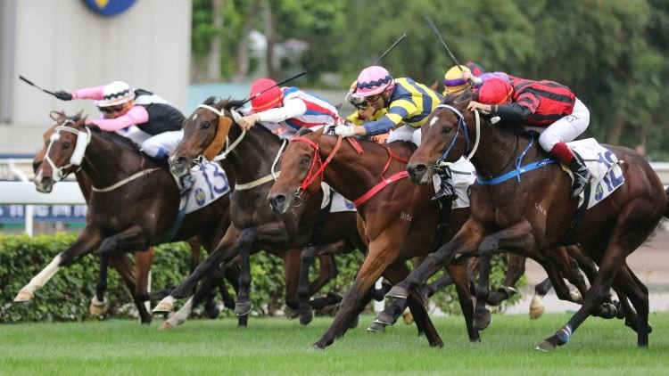 6/10/19 – Sunday Horse Racing Tips for Sha Tin