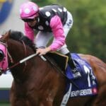 beauty generation racehorse