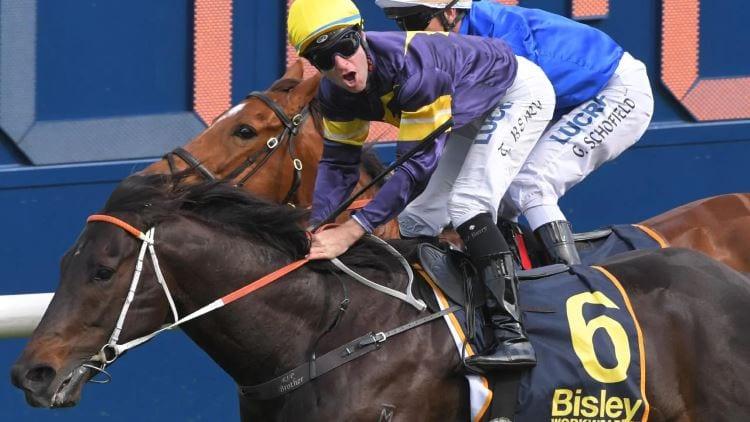 Golden Eagle 2019 – Horses, Betting Tips & Odds