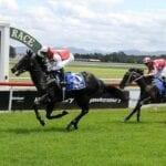hawkesbury horse racing