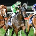 packenham night horse racing tips