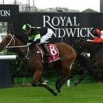 randwick kensington horse racing tips