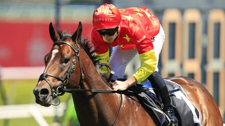 Coolmore Stud Stakes 2020 – Horses, Betting Tips & Odds