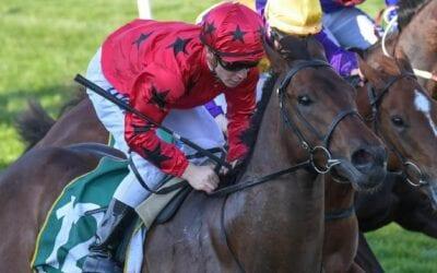 23/11/19 – Saturday Horse Racing Tips for Ballarat