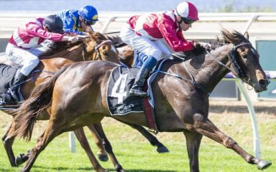 Railway Stakes 2020 – Horses, Betting Tips & Odds