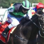mahis angel racehorse