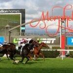 morphettville horse racing