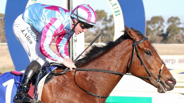 30/11/19 – Saturday Horse Racing Tips for Ascot