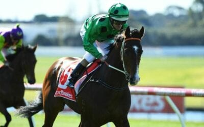 prince of caviar racehorse