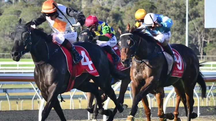 13/11/19 – Wednesday Horse Racing Tips for Doomben