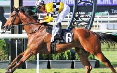 23/11/19 – Saturday Horse Racing Tips for Doomben