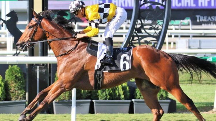 23/11/19 – Saturday Horse Racing Tips for Doomben