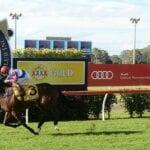 toowoomba horse racing
