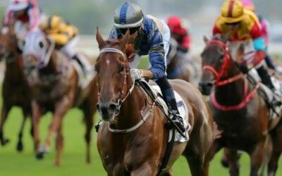The Chairman's Sprint 2020 (HK) – Horses, Betting Tips & Odds