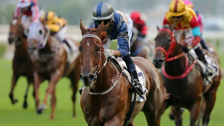 The Chairman's Sprint 2020 (HK) – Horses, Betting Tips & Odds