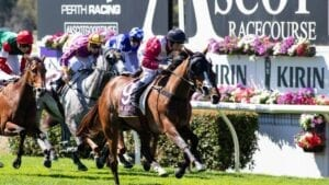 ascot horse racing tips