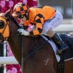 cruze racehorse