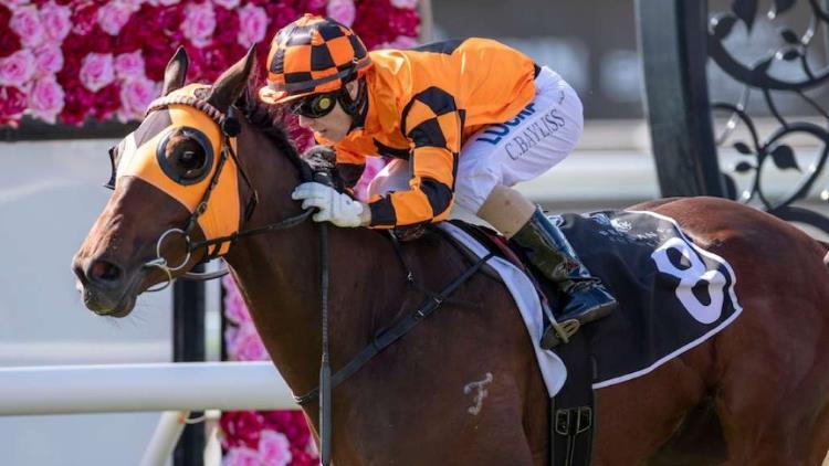 18/1/20 – Saturday Horse Racing Tips for Eagle Farm