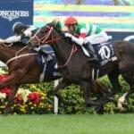 exultant racehorse