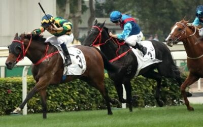 Hong Kong Cup 2019 – Horses, Betting Tips & Odds