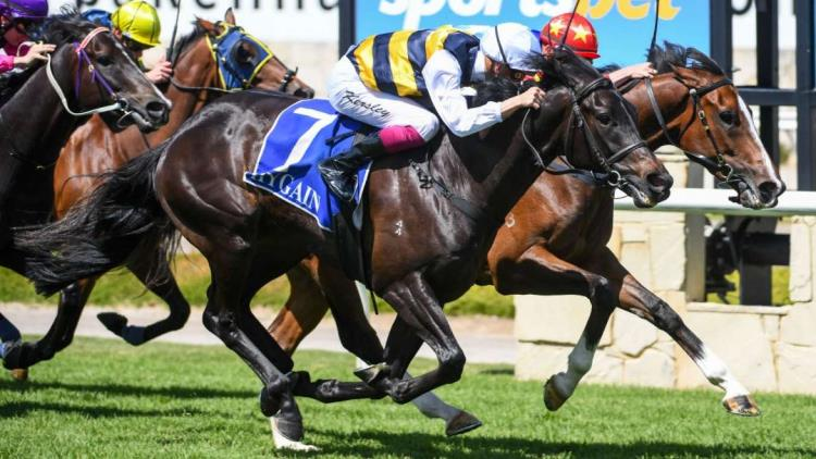 28/12/19 – Saturday Horse Racing Tips for Moonee Valley