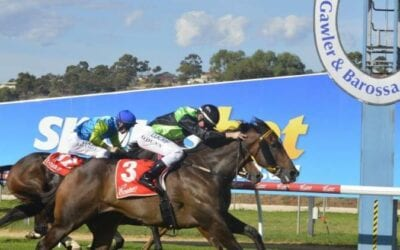 23/01/21 – Saturday Horse Racing Tips for Gawler