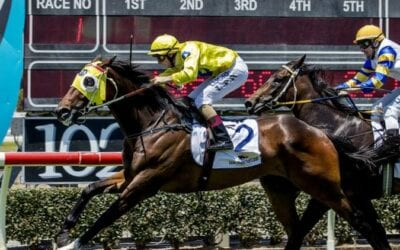 1/1/20 – Wednesday Horse Racing Tips for Doomben