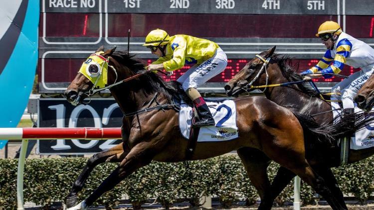 1/1/20 – Wednesday Horse Racing Tips for Doomben
