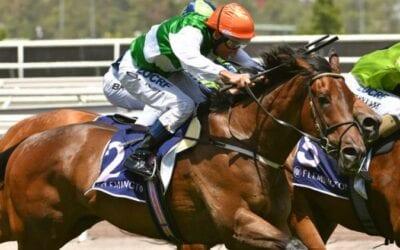 o'tauto racehorse