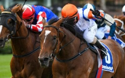 1/1/20 – Wednesday Horse Racing Tips for Flemington