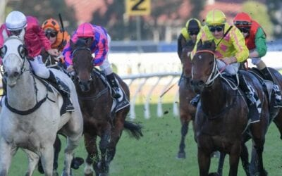 25/1/20 – Saturday Horse Racing Tips for Randwick