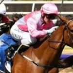 clarice cliffs racehorse