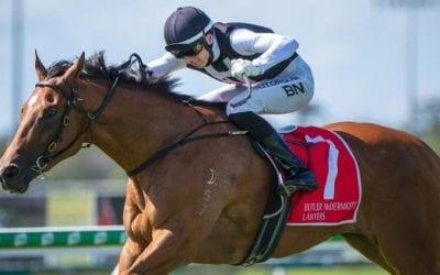 Magic Millions 3yo Guineas 2021 – Horses, Betting Tips & Odds