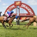 murray bridge horse racing
