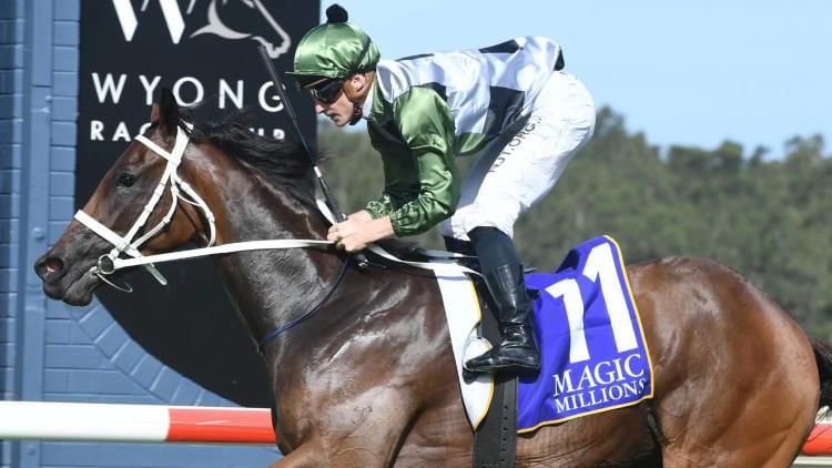 Magic Millions 2yo Classic 2021 – Horses, Betting Tips & Odds