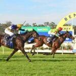 bendigo horse racing
