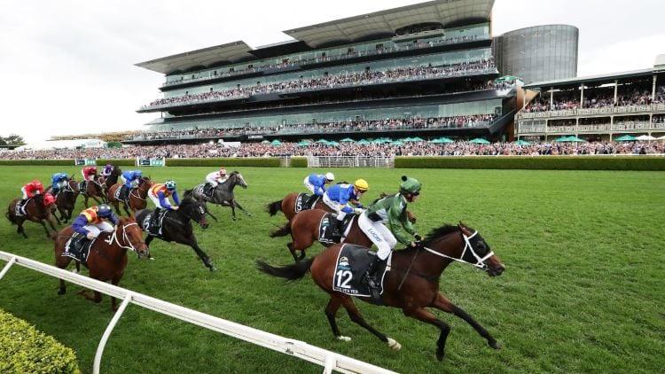 Horse Racing Bet Types