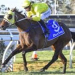 impasse racehorse