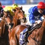 rubisaki racehorse
