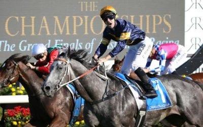 Chautauqua Racehorse