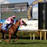 benalla horse racing tips
