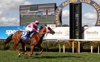 8/4/20 – Wednesday Horse Racing Tips for Benalla