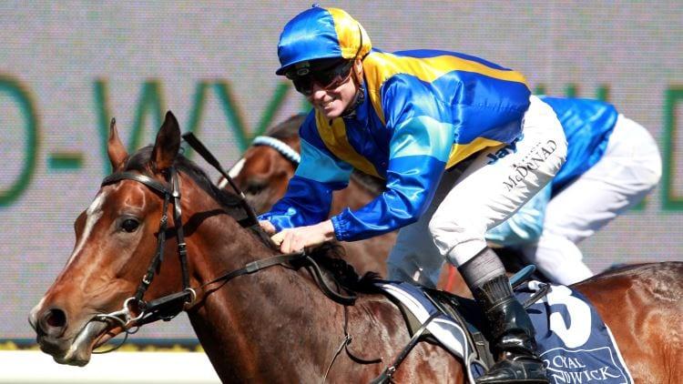 Dundeel Racehorse