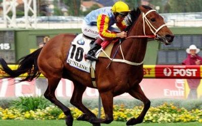 Sunline Racehorse